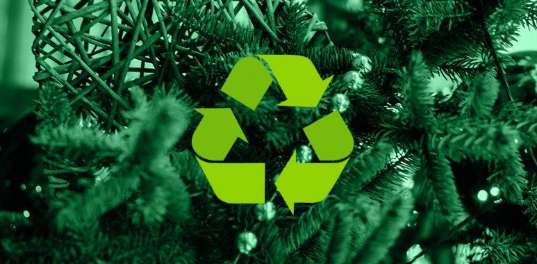 Wykorzystanie choinek na kompost razem z GOAP